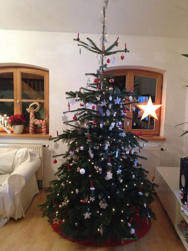 tannenbaum1