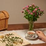 Freitag mit Klee und Tee