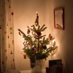 Weihnachtsbaumeinkauf und Sofias Kinderweihnachtsbaum und ein Nachtrag zu Lucia