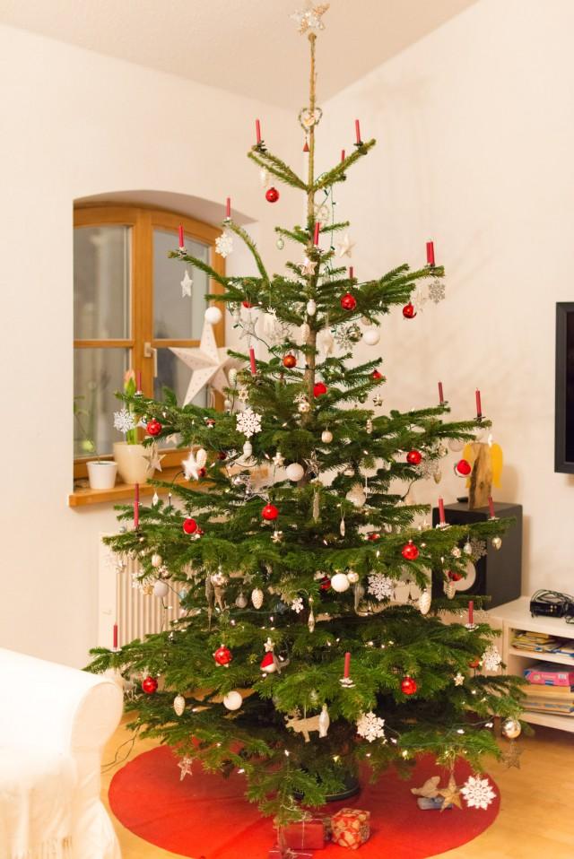 weihnachtsbaum_7