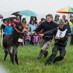 Eselrennen am Pfingstsonntag in Holzhausen