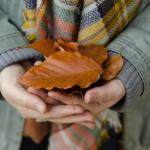 Herbstspaziergang am Höglwörther See