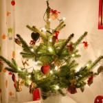 Sofias Weihnachtsbaum
