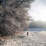 Frostbilder